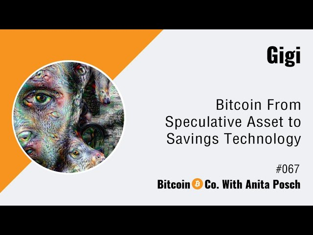 #067 Gigi: Bitcoin From Speculative Asset to Savings Technology (Audio)