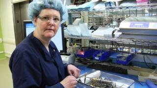 Sterile Processing Technician--Donna Reich