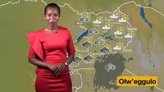 EMBEERA Y'OBUDDE NE KUTEESA MILLY 26 10 2019 LUGANDA