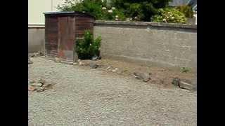 maison rue Nicolle la haye du puits
