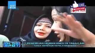 On The Spot Terbaru Penampakan Hewan Aneh di INDONESIA