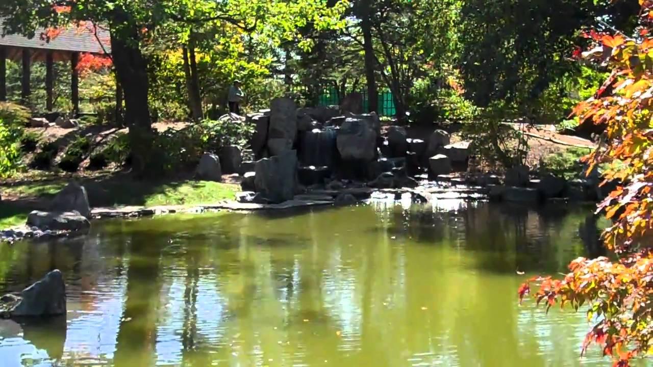 Osaka Gardens: Chicago's hidden jem - YouTube
