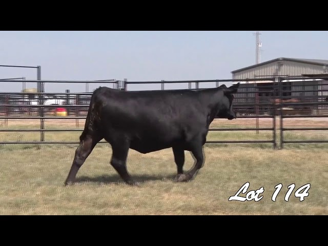 Pollard Farms Lot 114