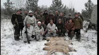 Охота на волков с флажками