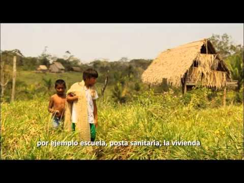 Encuentro educativo entre pueblos indígenas de la Amazonía