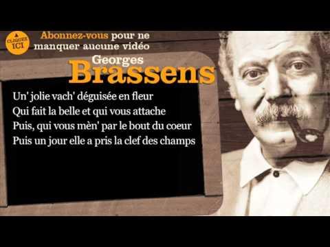 Georges Brassens - Une jolie fleur - Paroles ( Karaoké )