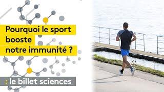 Pourquoi le sport booste notre immunité ?