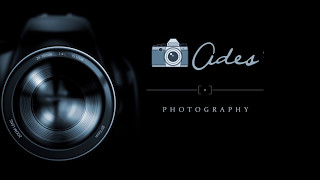 Intro Logo After Effect Photographer Free Download