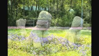 Johannes Brahms Intermezzo op.119, Nr. 3, C-Dur Grazioso e giocoso