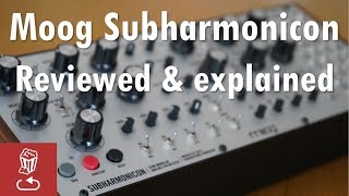 Moog Subharmonicon Reviewed and Explained