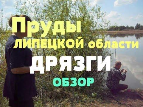 Наши ПРУДЫ // ОБЗОР // Рыбалка