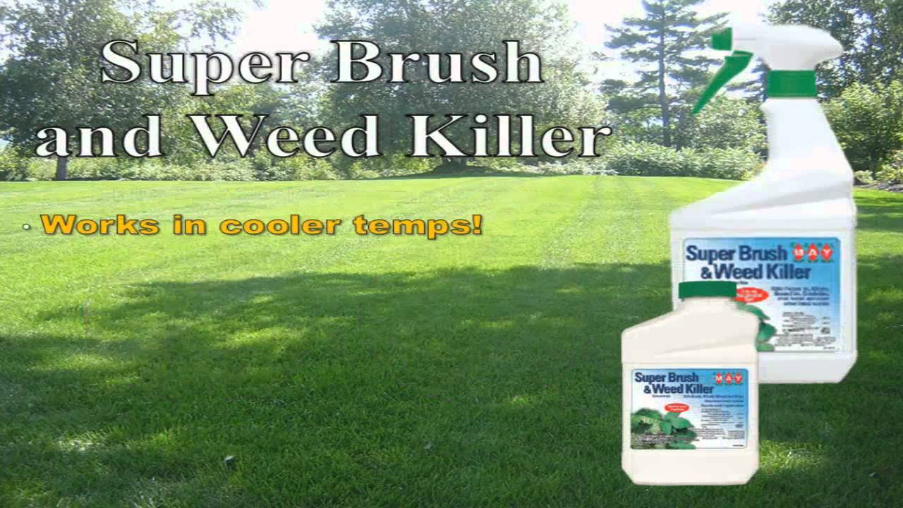 Earl May Garden Center Super Brush And Weed Killer Youtube