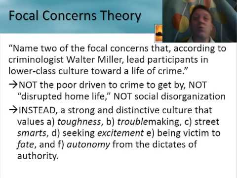 Crim Review: Routine Activities, Victims, Focal Concerns, Labeling Theory