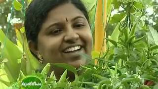 Successful terrace cultivation practices by house women -  story of Mrs. Sujitha, Trivandrum - 605