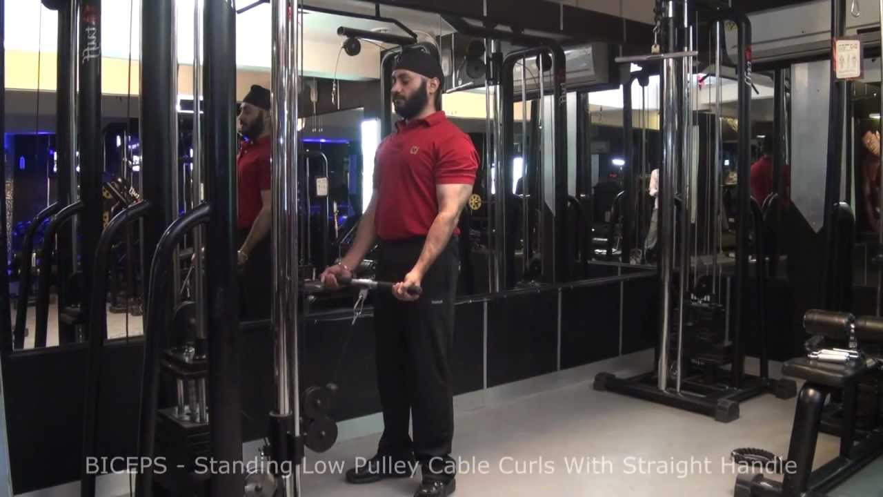 Rope Pulley Curls : Biceps standing low pulley cable curls with straight