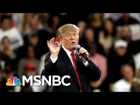 Trump's 2016 Win, Two Impeachments Center On His Opposition To Democracy | All In | MSNBC