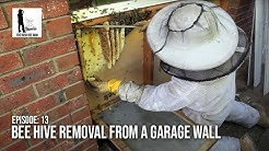 Honey Bee Removal from a Carport Wall - The Bush Bee Man