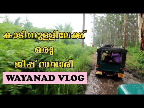 Trip to wayanad - Muthanga forest, Edakkal Caves, Kanthanpara waterfalls