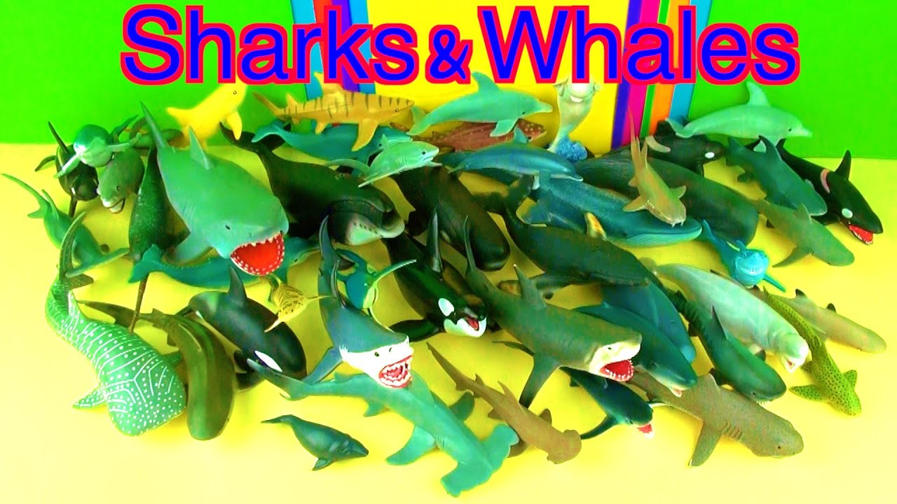 Shark toys collection whales fish jaws toys for kids for Swimming fish cat toy