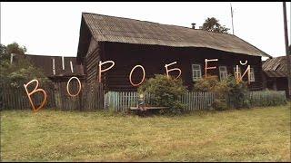 Художественный фильм «Воробей»  режиссер Юрий Шиллер ©2010