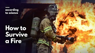 How to Survive a Fire, According to Science