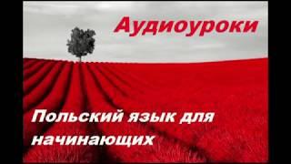 Аудиокурс Польского языка.Виза в Польшу Урок №1,2,3,