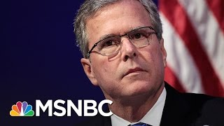 'Please Clap:' A Look Back At Jeb Bush's Campaign | All In | MSNBC