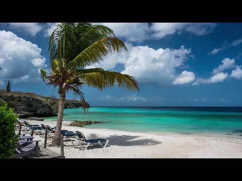 10 Hours of Ocean Waves & Seagulls Relaxation Sounds  Healing Sounds for Deep Sleep & Relaxation
