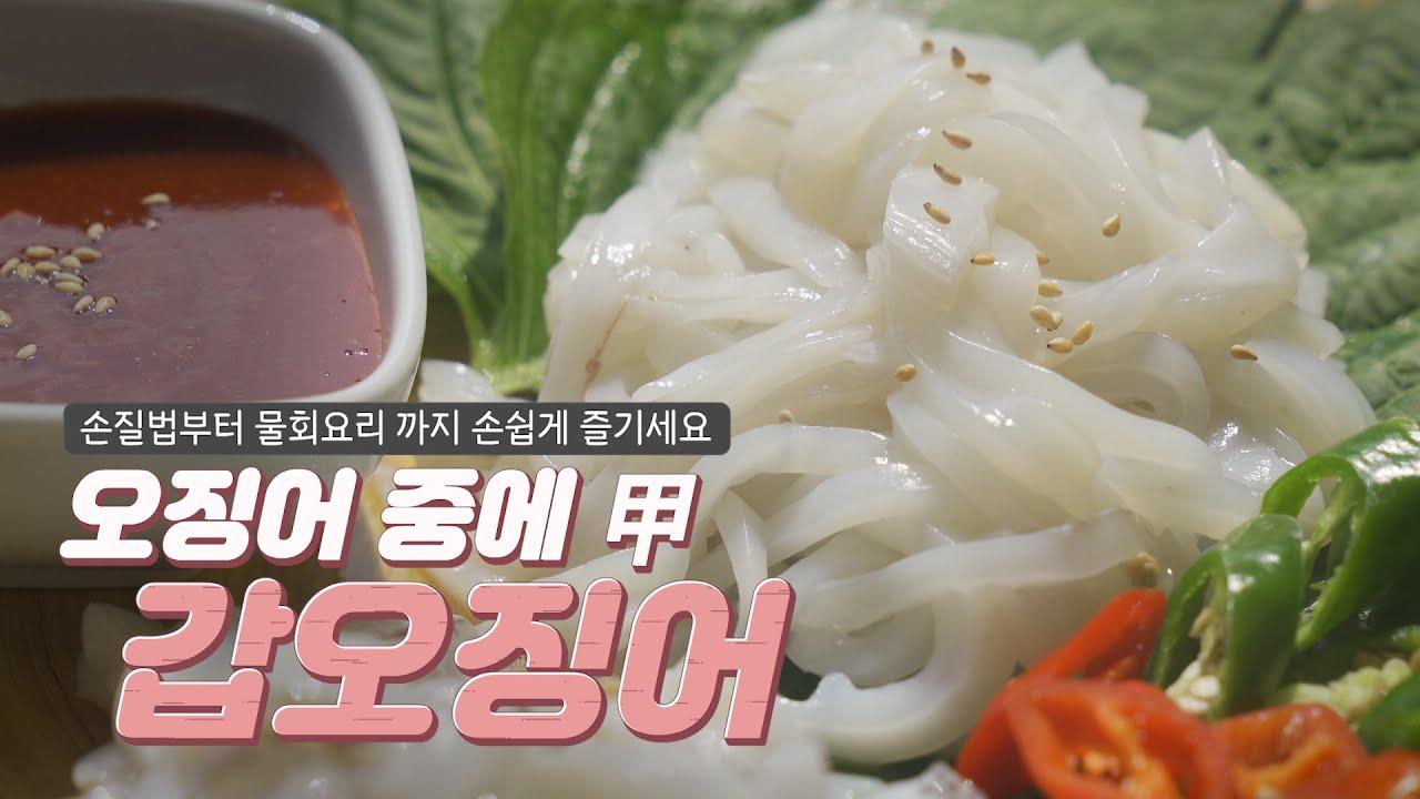 갑오징어 회 손질법 및 여름철 시원한 물회 요리법