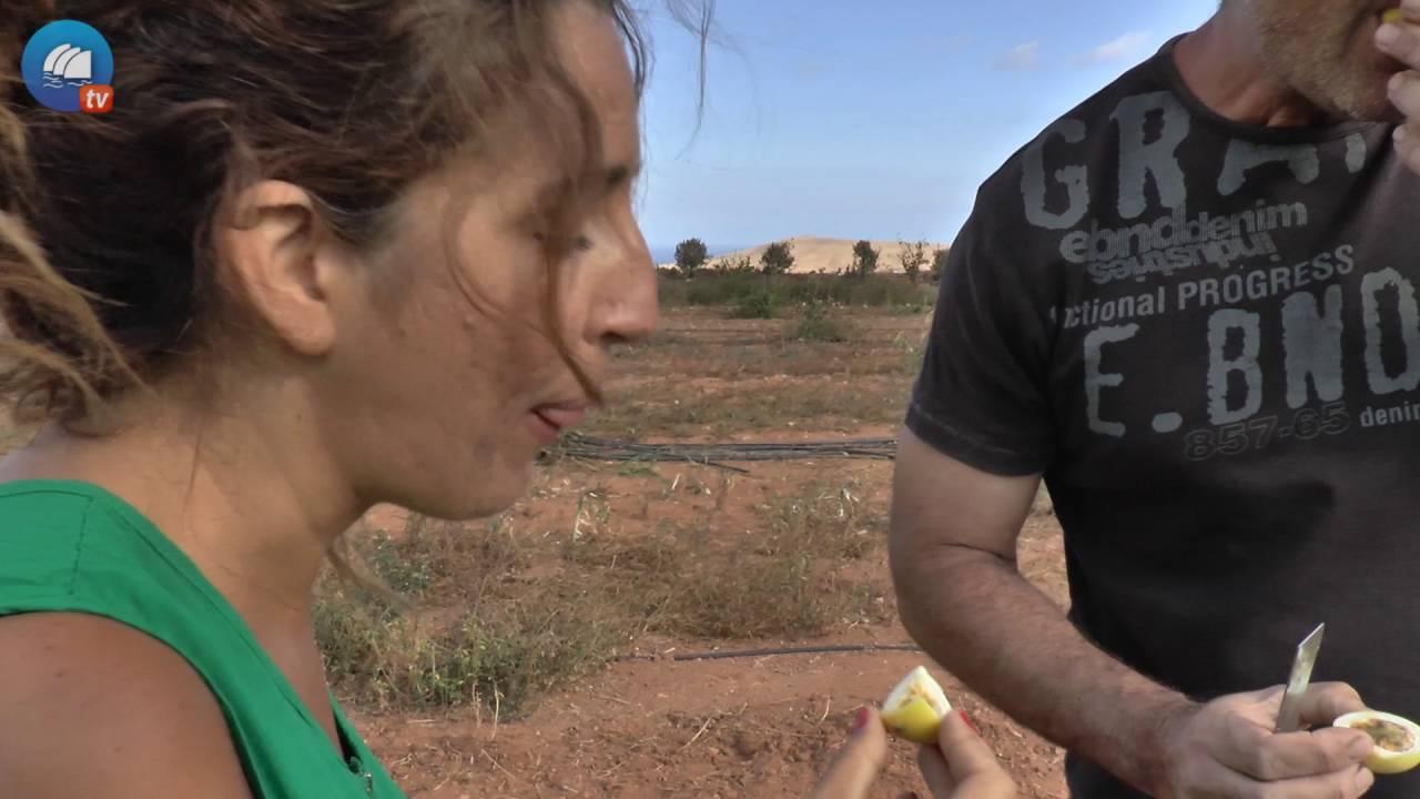 Saborea Fuerteventura T2 - Episodio 2 (15/10/2016)
