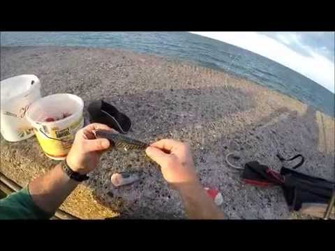 Conger Fishing On Brixham Breakwater.