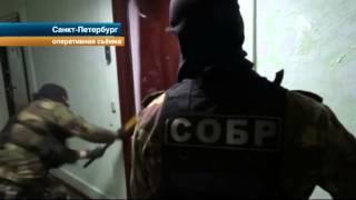В Петербурге задержаны мошенники, продававшие пенсионерам витамины под видом дорогих лекарств
