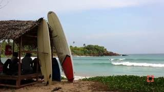 Surfing the South Coast of Sri Lanka