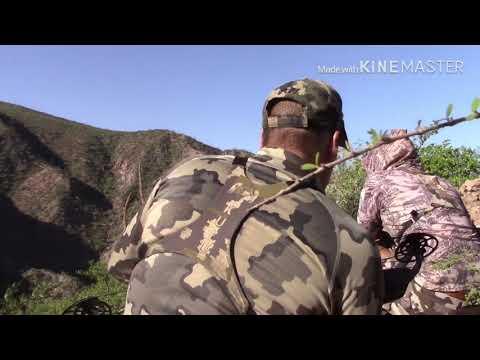 BOWHUNTING DESERT SHEEP HUNT BAJA CALIFORNIA
