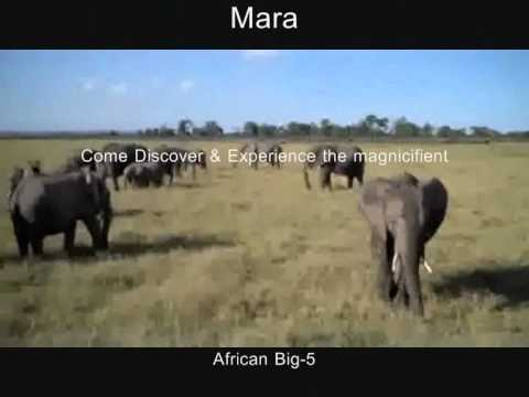 Tours To Kenya By PIKA TRAVELS