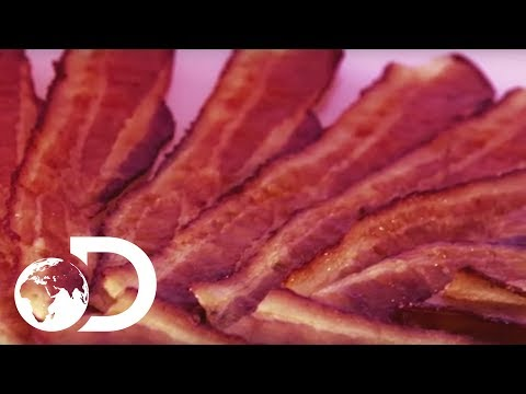 BACON   How It's Made