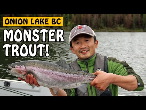 MY BIGGEST RAINBOW TROUT EVER! JUNGLE MONSTER TROUT | FISHING WITH ROD