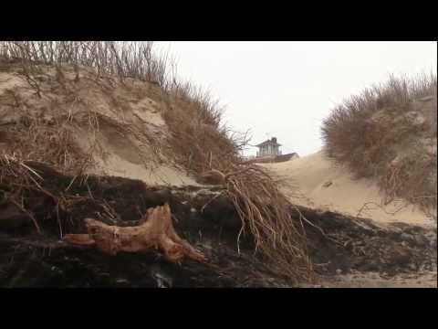 Erosion Reveals Old Swamp At Coast Guard Beach, Cape Cod