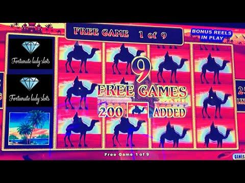 Casino tarkastelu bellini