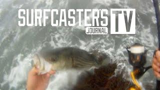 PENN Slammer III - Fish and Rough Surf Test