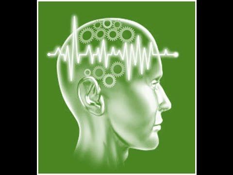 Channel Brainergizer