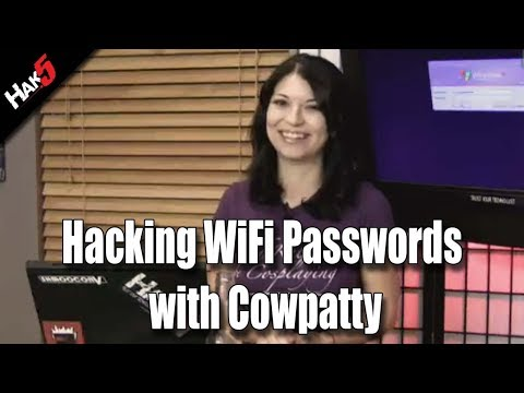 Hacking WiFi Passwords with Cowpatty, plus Vista Security Hacks!