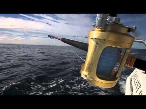Reel Time Fishing Charters Tuna Fishing Portland Victoria