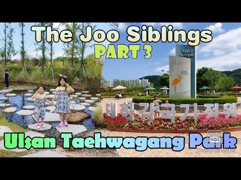 part-3-|-roaming-around-taehwagang-national-garden-|-by:-the-joos-|-arnz-weblogs