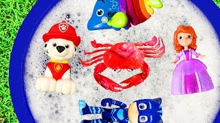 Bucket Of Toys - Learn Chracters with Paw Patrol, Pj Masks and Peppa Pig - Toys for Kids