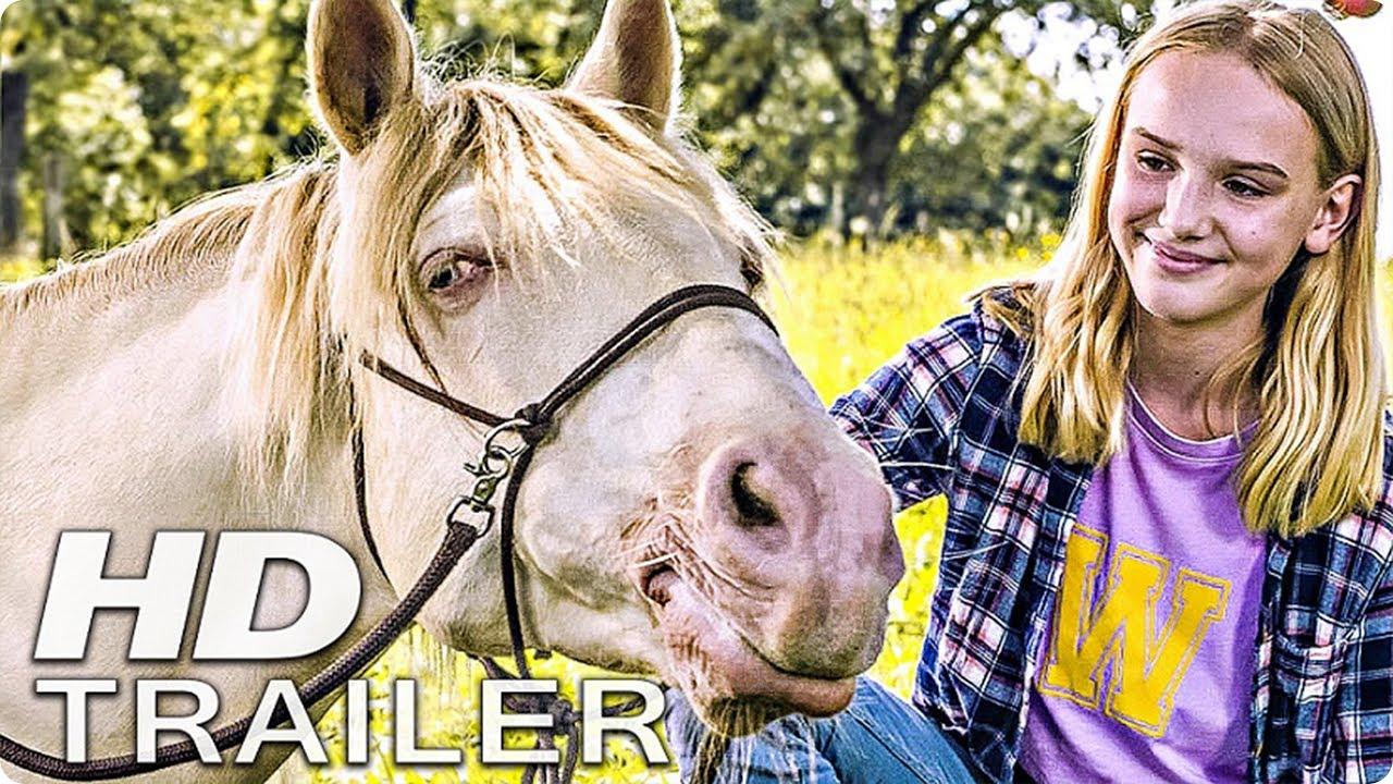 Trailer Wendy 2