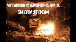 Winter SNOWSTORM CAMPING in a Bushcraft Shelter with Dogs