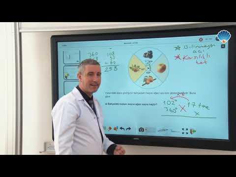 8.Sınıf Matematik Veri Analizi
