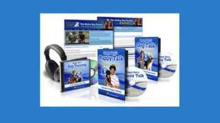 Doggy dan dog training  real reviews   how does dog training work for a dog