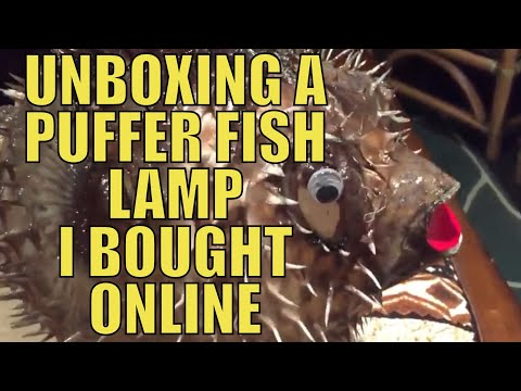 Unboxing A Puffer Fish Lamp I Bought Online